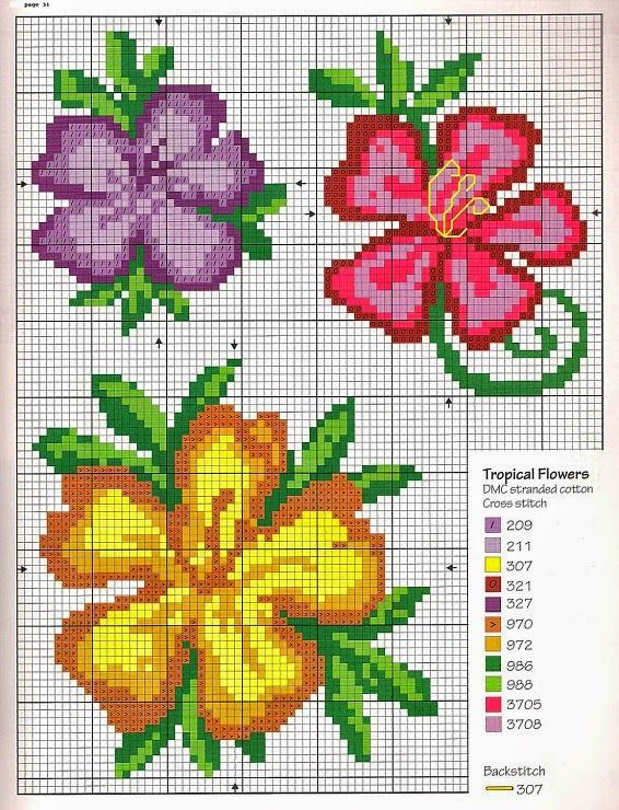 Best images about cross stitch hibiscus on pinterest