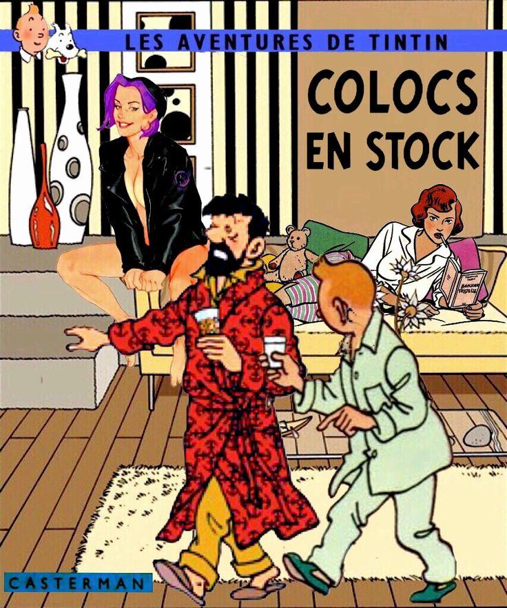 Tintin Colocs en stock