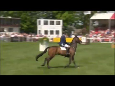 Badminton Horse Trials 2016 - Cross Country - YouTube