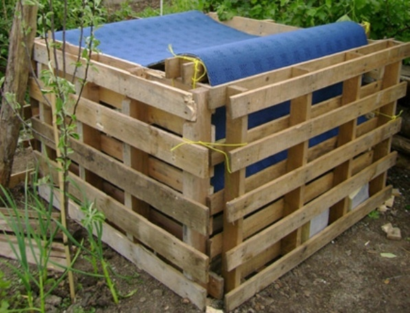 compost garden ideas Varsity Gardening Pinterest