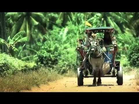 Lombok lombok lombok