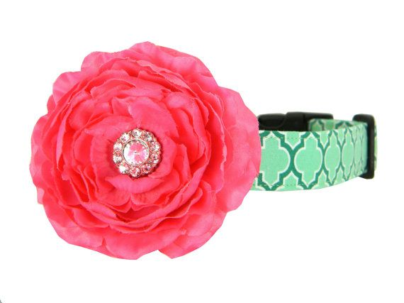 Pink Aqua Rhinestone Dog Flower Collar, Dog Collar Flower Set: Seagrove Lattice with Rani