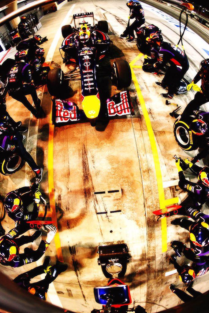 Daniel Ricciardo #1 @ Hungary 2014 stunning drive