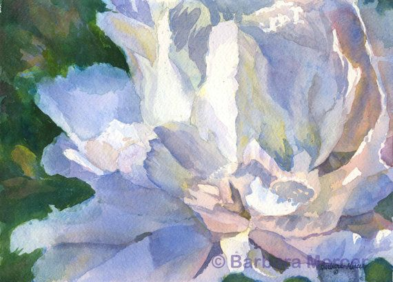 White Peony Art Watercolor Painting Print by Barbara by PaintDaubs
