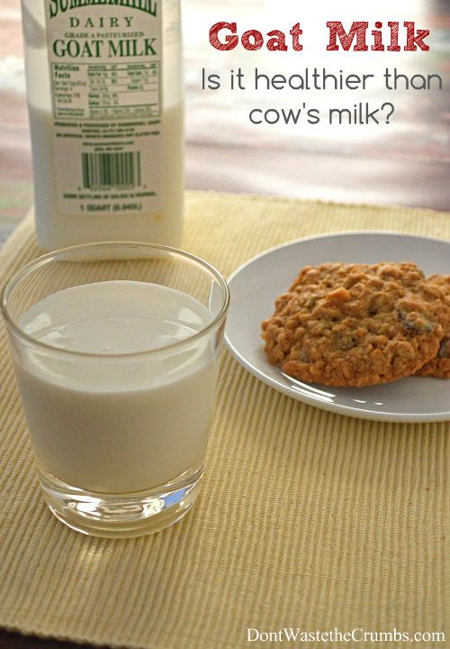 Goat Milk:  Is it Healthier than Cow's Milk?  7 Benefits you might not have heart of.   DontWastetheCrumbs.com