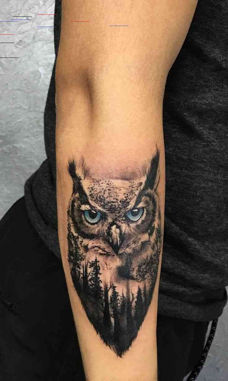 50 Of The Most Beautiful Owl Tattoo Designs And Their Meaning For The Nocturnal Animal In You In 2020 Owl Tattoo Design Owl Tattoo Drawings Owl Tattoo Sleeve