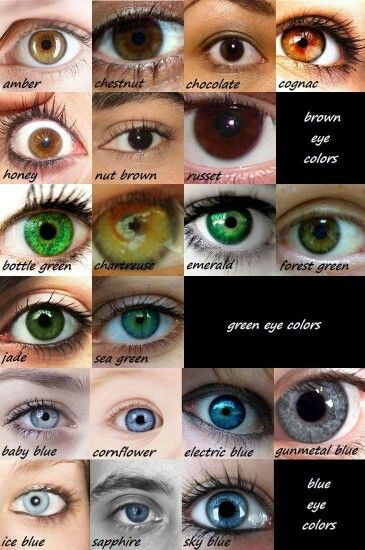 Mine are a cross between forest green & sea green.. Most people think theyre blue becuz of slight blue tint to my contacts.. But i like that theyre green, even though ALL my family has blue, even 3 of my grand parents.. Only paternal g'pa had dark brown almost black-olive color eyes