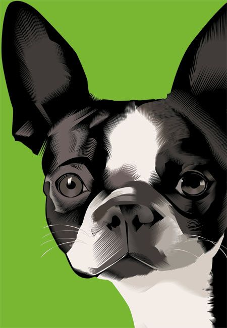 .: Art Dogs, Baileys, French Artists, Green Color, Artists Xoil, French Bulldog Art, French Bulldogs Art, Boston Terriers, Beantowndogs Net