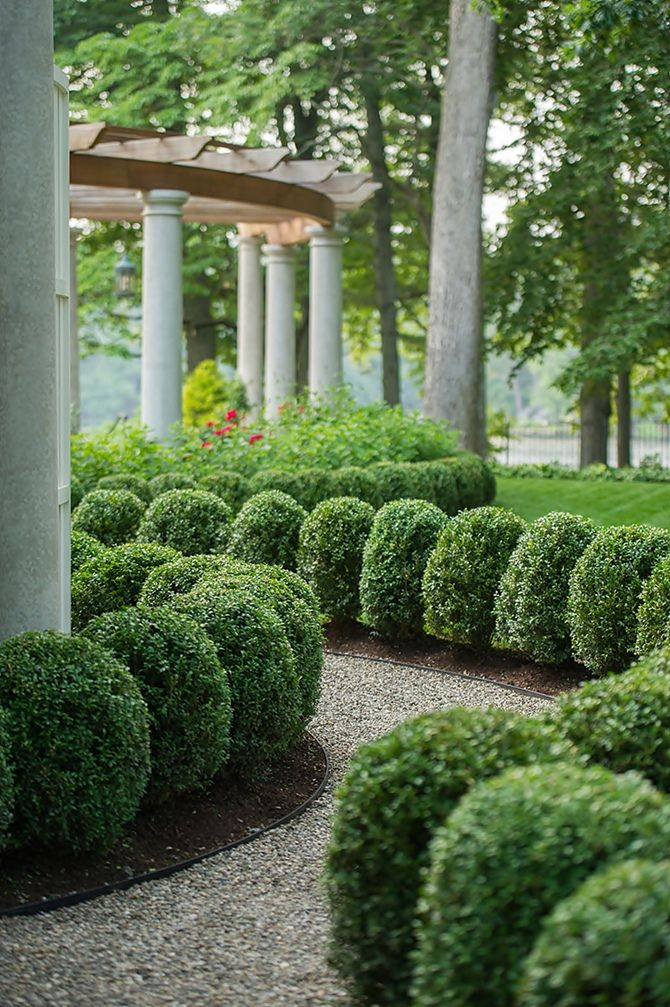 36 best 39 boxwoods in the garden images on pinterest for Formal front garden ideas
