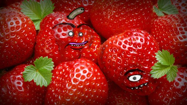 Is it Ripe? How to Tell When Your Favorite Fruits and Vegetables are Ready to Eat: Crock Pots, Strawberries Lemonade, Food, Strawberries Jam, Smoothie Recipes, Scented Candles, Weightloss, Healthy Recipes, Weights Loss