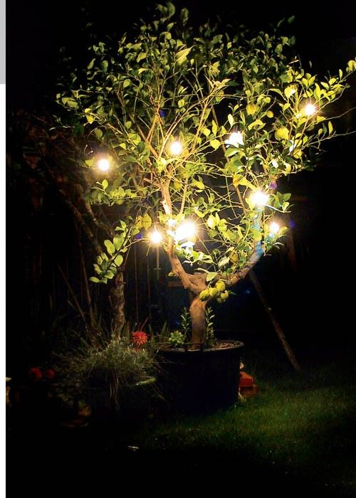 252 best Jardin  aménagement, couleurs images on Pinterest
