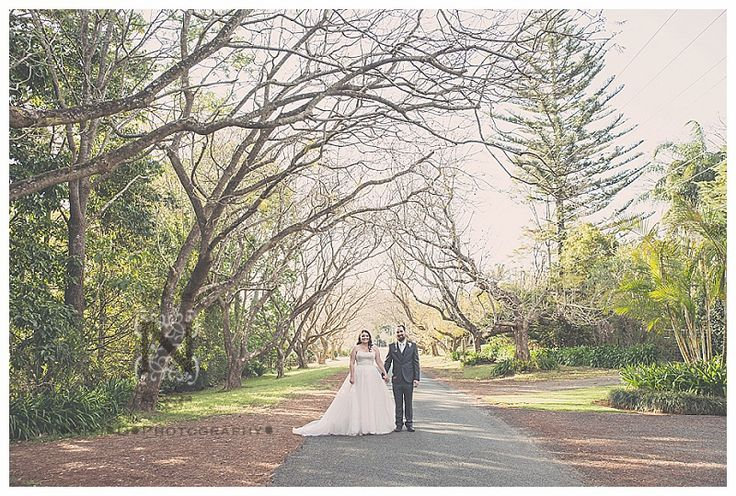 These Jacarandas look amazeballs in Oct/Nov.. Mount Tamborine wedding. As locals we are lucky to be spoilt for choice when it comes to venues and locations for shooting! This wedding was held at The Heritage - stunning old charm venue. Contact us today to book your Mount Tamborine dream wedding!  Contact us to book today! nikidphotography@outlook.com 0421 852 405
