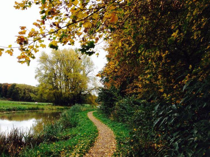 Herfst in de Achterhoek / IJssel - Ulft / Gendringen