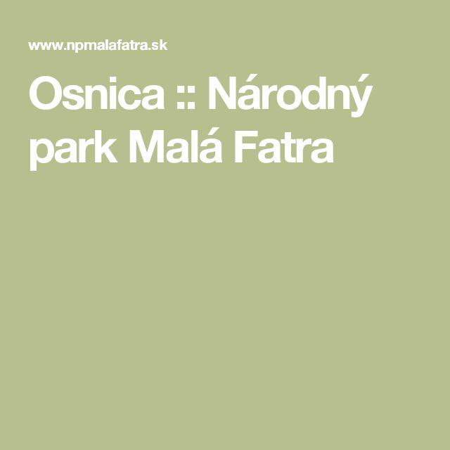 Osnica :: Národný park Malá Fatra