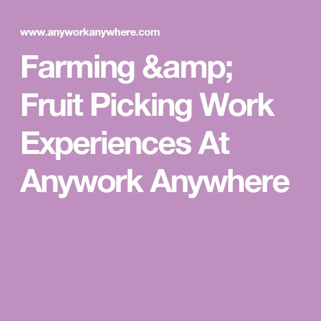 Farming & Fruit Picking Work Experiences At Anywork Anywhere