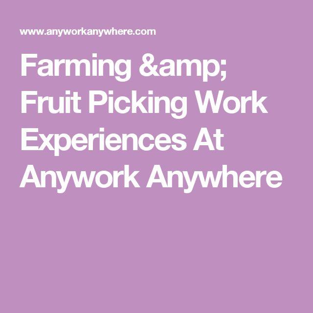 Farming & Fruit Picking Work Experiences At Anywork Anywhere