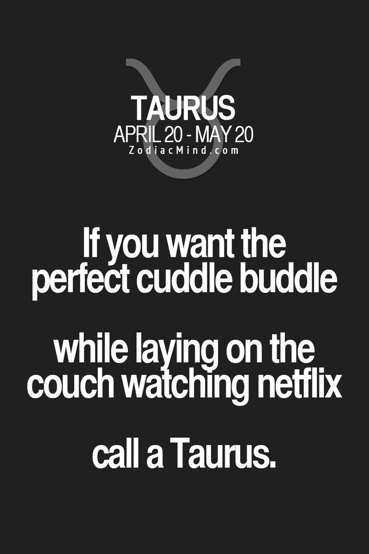 If you want a perfect cuddle buddie while laying on the couch watching Netflix, call a Taurus