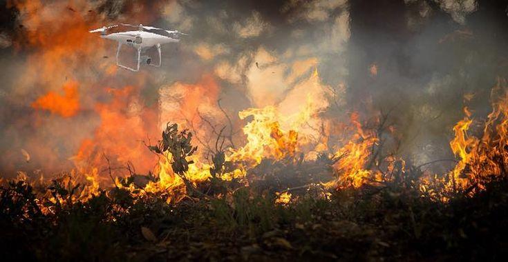 ecodrones-1 Drones: Más que diversión una herramienta de prevención