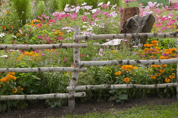 I love the wooden rail fence!  The flowers are just so beautiful!  (: