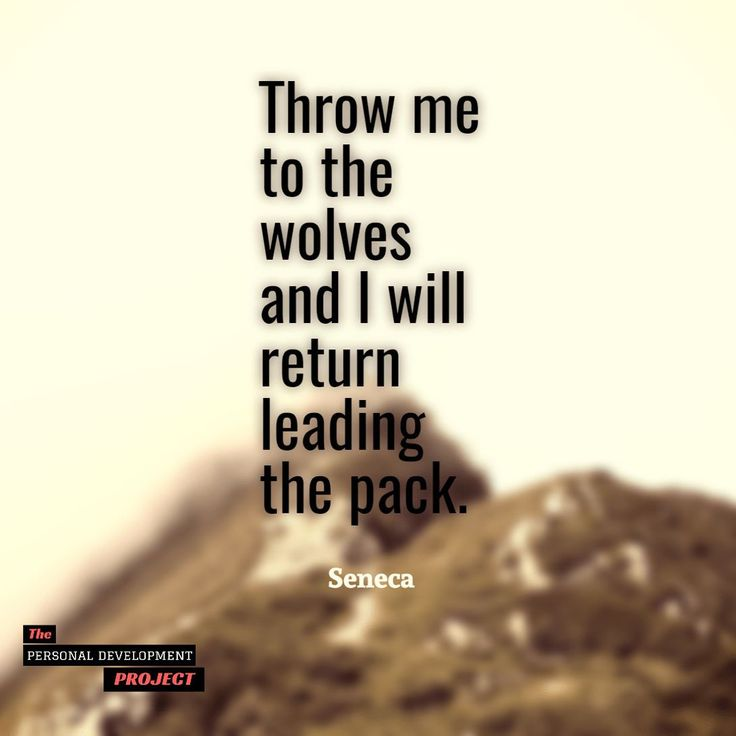 """""""Throw me to the wolves and I will return leading the pack."""" Seneca #leadership  Double tap if you like follow @psychologymastery for more!  #thepdproject #attitude #successdosedaily #psychologymastery #success #picoftheday #determination #entrepreneur #exercise #physique #transformation #strength #calisthenics #growthhacking #successtips #professionaldevelopment #successmindset #entrepreneurquotes #successstory #businesstips #entrepreneurial #publicspeaking"""