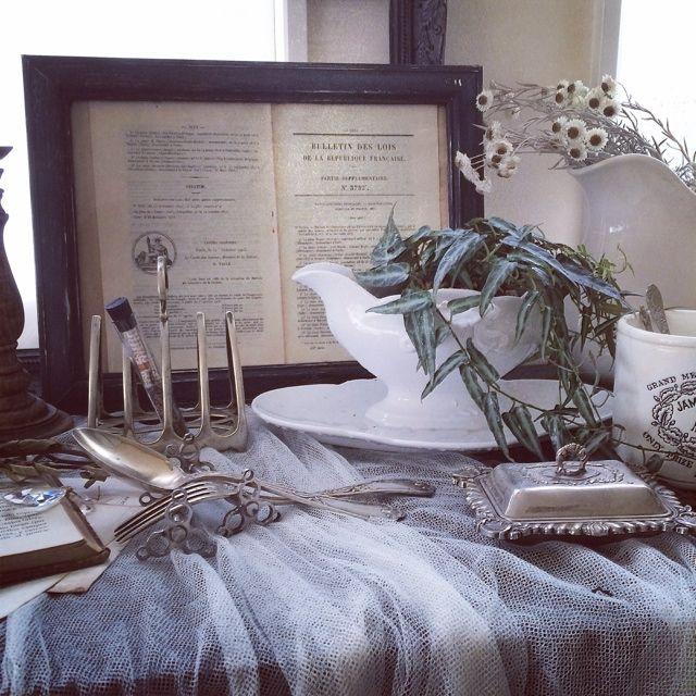 植物で癒しを/植物 つる/グリーンを増やしたい/DIY/ブログしてます♪/ブログやっています。…などのインテリア実例 - 2014-09-08 09:14:26 | RoomClip(ルームクリップ)