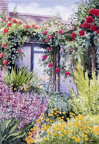 Rose Trellis - watercolour by Dorothy Pavey