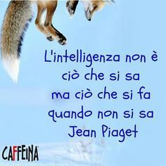 Intelligence is not what you know but what you do when you do not know( Jean Piaget)