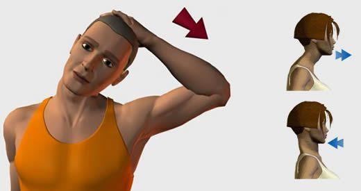 Le cervicali sono 7 vertebre che si trovano nella parte più alta della colonna vertebrale. [Leggi Tutto...]