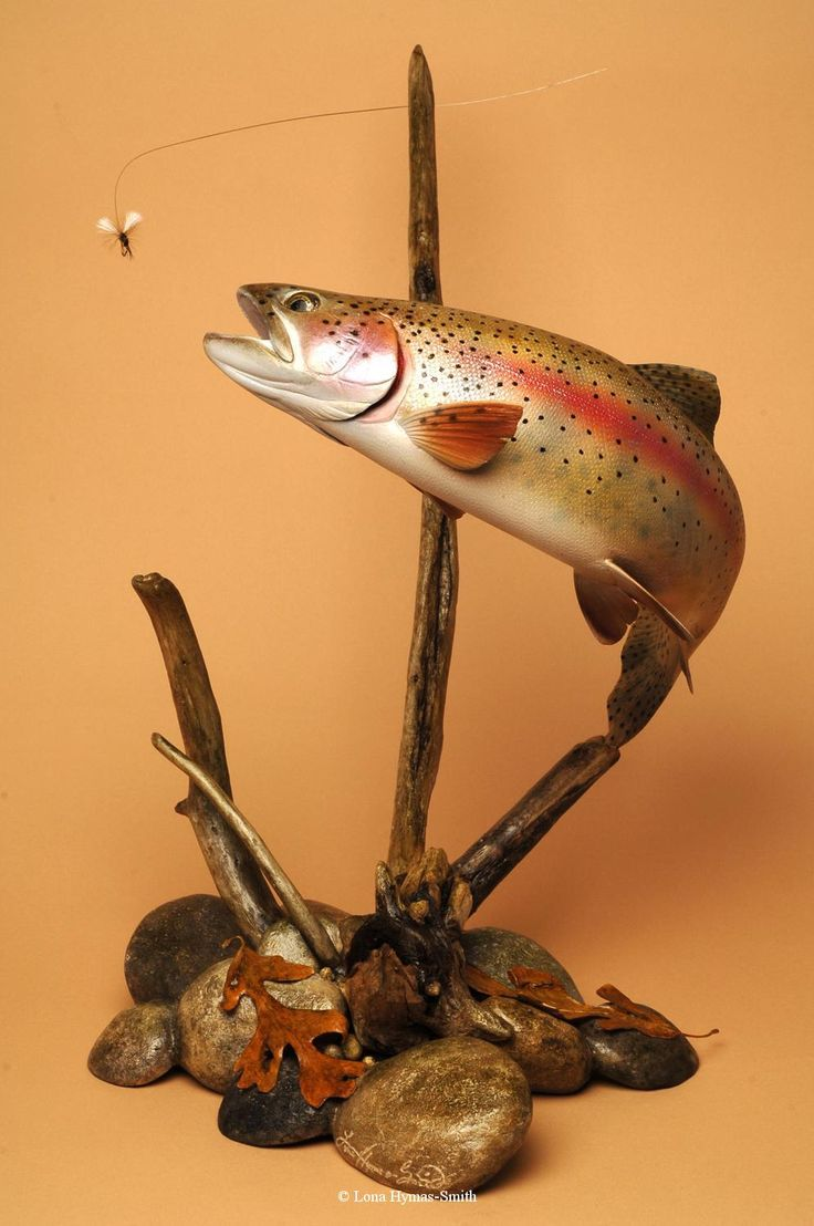 """Wooden Trout Trout Carvings by By Lona Hymas-Smith (1961-2012)...I wish I had found these years ago, my dad would have loved them in his """"man cave"""", along with all his fly fishing books and paraphernalia."""