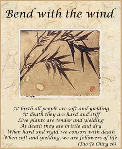 tao te ching. Be Like WATER... flow!  Be like the Willow tree...BEND!  Be like TAO...you are complete in this moment, and nothing is needed to be who you are... so just BE!