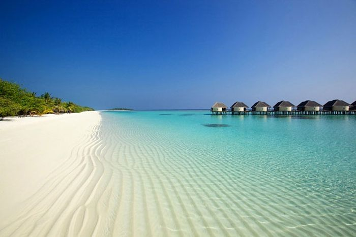 Travel Photos, Resorts, Best Quality, Tropical Paradise, Places, The Maldives, Borabora, Tropical Beach, Luxury Hotels