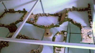 1: 2,7m² / 29ft square / 4176in square Diesen traumhaften Eigenbau mit einer Gr…