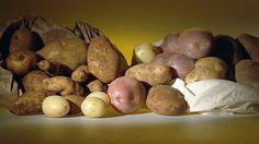 Potato Varieties in Australia - Ingredients & Tips - Poh's Kitchen