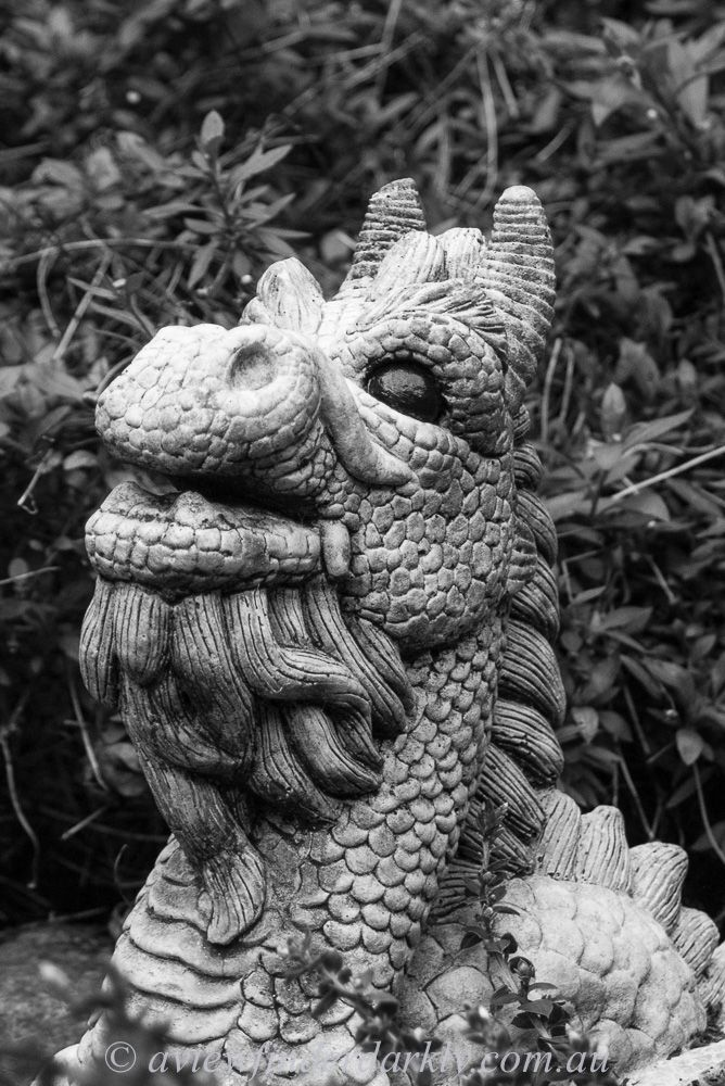 The grey concrete garden statue was an ideal candidate for the Black and White treatment as it pushed the green vegetation further into the background.    Adobe Lightroom  tips on #blackandwhitephotography here  http://aviewfinderdarkly.com.au/2016/07/13/black-and-white-photography/