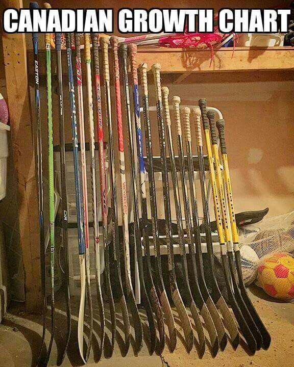 Canadian growth chart. The stereotype Canadian plays icehockey, if they keep all the sticks. they can see the growth during their lifetime. More