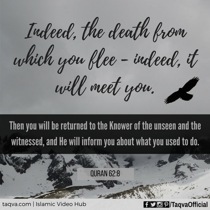 """""""Indeed, the death from which you flee - indeed, it will meet you. Then you will return to the knower of unseen and witnessed, And He will inform you about what you used to do."""" Surah jumuah :62:8 Qur'an. Allah u akbar"""