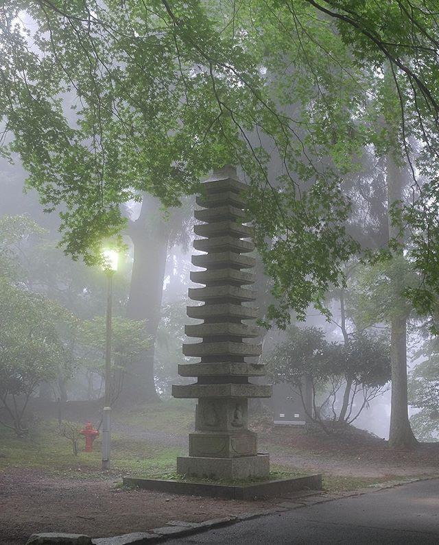比叡山延暦寺、余りにも濃霧。 しかし涼しい。 World Heritage Site ENRYAKU-JI Temple was too much heavy fog.  #比叡山 #延暦寺 #世界遺産 #濃霧 #真っ白け #hieizan #MtHiei #enryakuji #JapaneseTemple #WorldHeritageSite #HeavyFog #WhiteOut