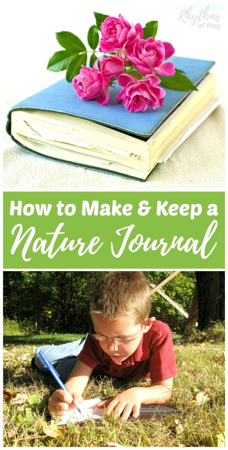 DIY Nature journals make it fun for kids and adults to study nature. Record observations, create art and write learning experiences in the natural world. Includes easy ideas to make a nature notebook, free printable resources, and simple tips to keep one.