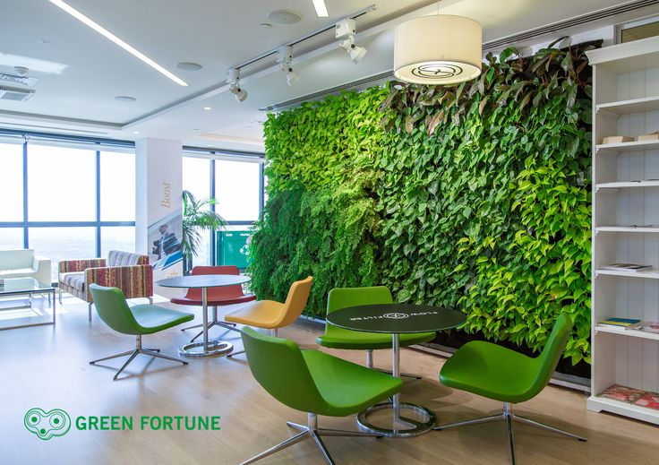 Green Fortune plantwall / vertical garden in office entrance / reception area. | Grüne Wand | Groene wand