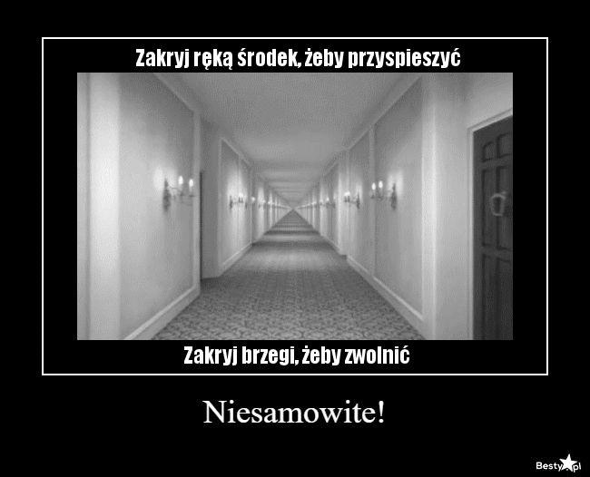 Jak w tytule :). Wiem, że na Wattpadzie jest już mnóstwo memów, ale … #losowo # Losowo # amreading # books # wattpad