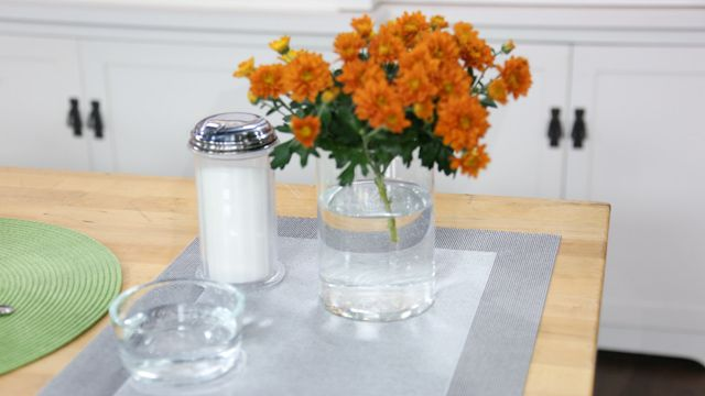 How to Keep your Flowers Fresh for Longer!