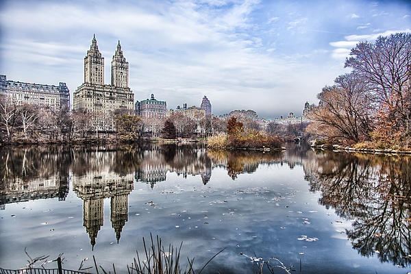This shot was taken in Central Park New York City
