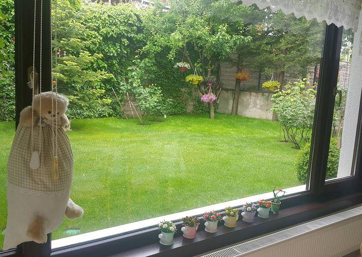 #yağmur #yeşil #fosforlu #renkler #filtresiz #doğa #arkabahçe #bahçe http://turkrazzi.com/ipost/1524595434230887917/?code=BUoc3hDg7Xt