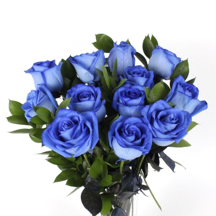 blue roses 1 dozen by fiesta roses apartment wishlist