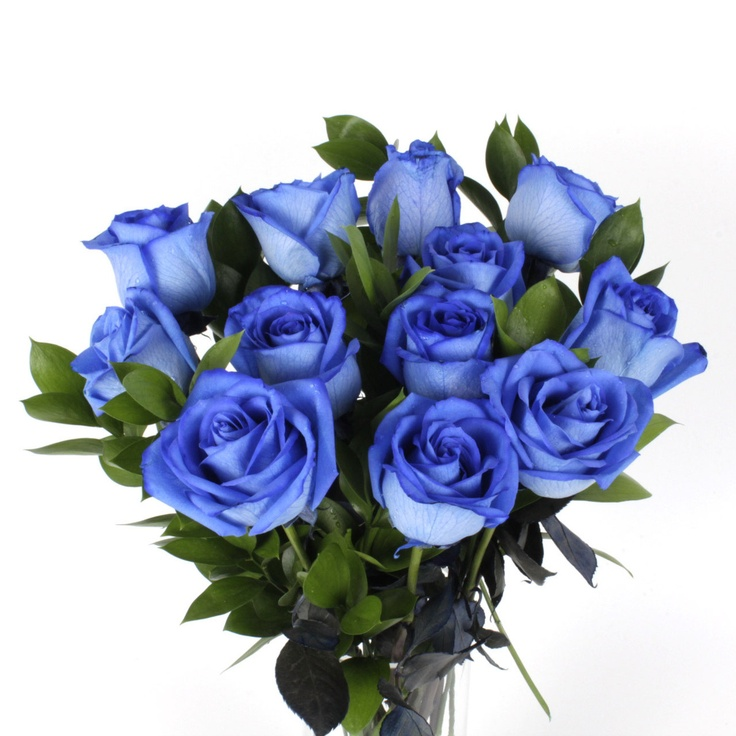 109 best images about blue roses on pinterest copper