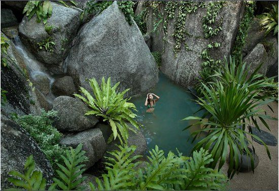 Tamarind Springs Forest Spa, Ko Samui: See 404 reviews, articles, and 88 photos of Tamarind Springs Forest Spa, ranked No.1 on TripAdvisor among 86 attractions in Ko Samui.