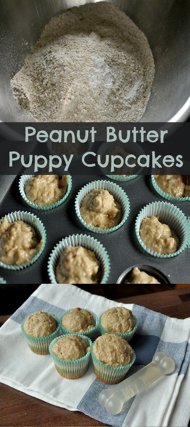 Quick and easy all-natural peanut butter cupcakes for dogs... that are wholesome enough for their humans, too. #dogs #pets #dogtreats