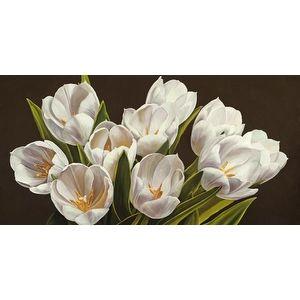Bouquet Di Tulipani by Serena Biffi Flowers And Plants Art Print