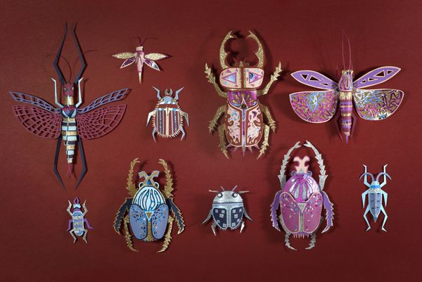 Papercrafted insects by Zim (Thibault Zimmermann & Lucie Thomas), a studio based in Nancy, France