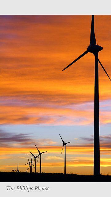 Australia Wind Farm Renewable Energy by tim phillips photos, via Flickr.